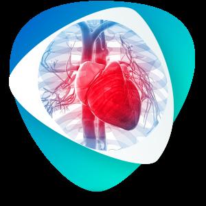 الکتروفیزیولوژی قلب