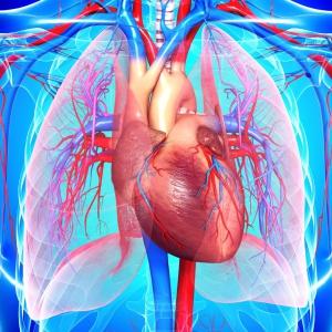 اخطار بدن برای وجود بیماری های قلبی